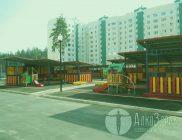 Павловск трезвый город
